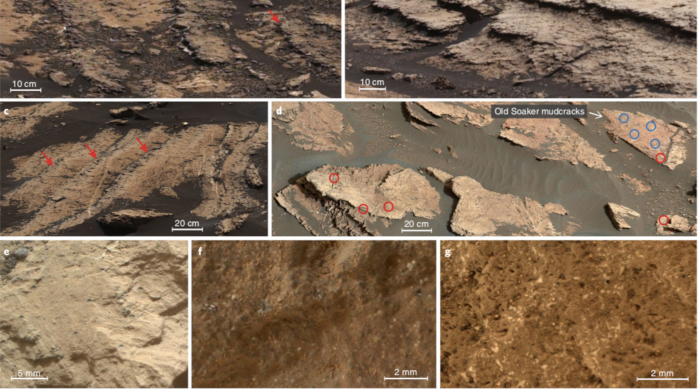 NASA's Curiosity Rover Uncovers Dried, Salty Lake Bed in Martian Crater