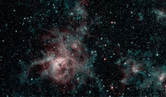 Spitzer image showing the Tarantula nebula in two wavelengths of infrared light - red regions indicate the presence of particularly hot gas and blue are interstellar dust, similar in composition to ash from coal or wood-burning fires on Earth.
