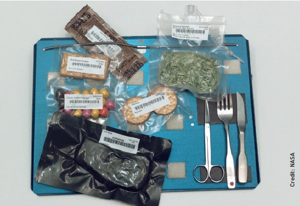 A tray bearing bags of ISS food and utensils, including repackaged M&Ms, shortbread biscuits, crackers, creamed spinach and steak.